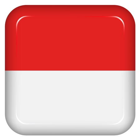 Vector indonesia flag Vector