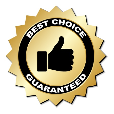 quality seal: vector best choice guaranteed label
