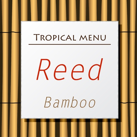 Vector white banner hang on bamboo Vector