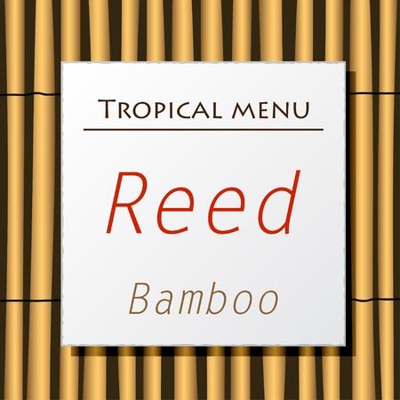 Vector white banner hang on bamboo Stock Vector - 11564478