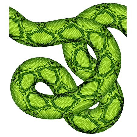 green snake seamless Stock Vector - 14941408