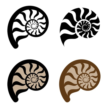 mollusk: shell silhouette