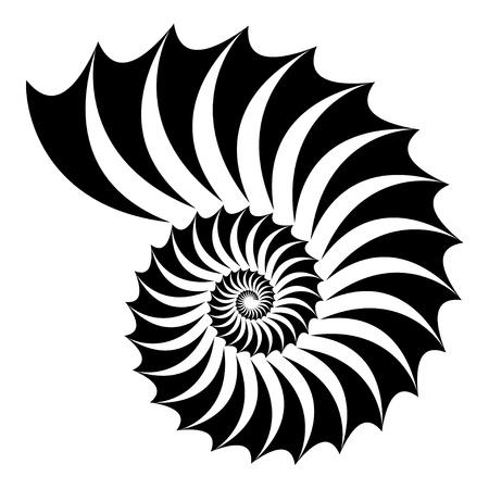 sea shell:  shell silhouette