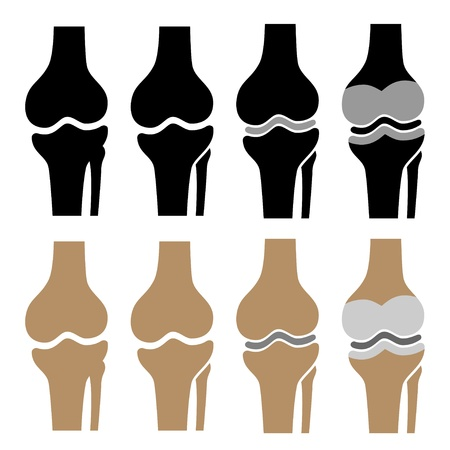 bones of the foot: vector human knee joint symbols Illustration