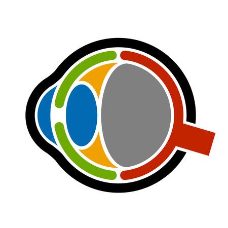 lateral eyes: vector anatomy human eye icon