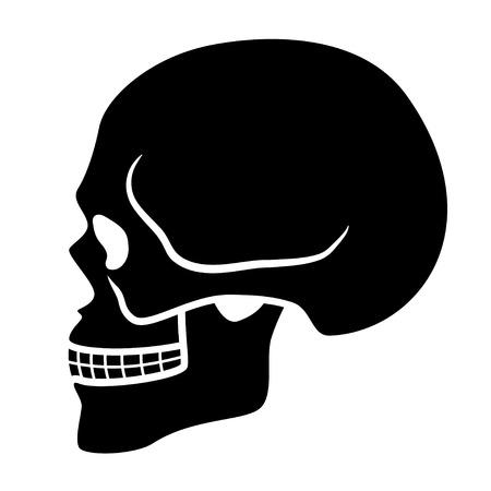 vector human skull symbol - side view Illustration