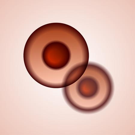 membrana cellulare: biologia cellule vettore EPS10 al microscopio Vettoriali