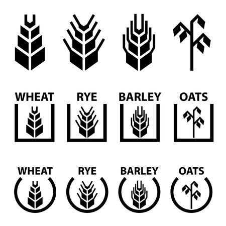 rye: vector wheat rye barley oat cereal spike ears symbols
