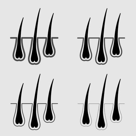 thinning: vector growth hair follicle icon Illustration