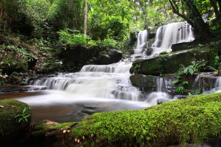 forest stream: Man Daeng Waterfall, Phu Hin Rong Kla  National Park at Phitsanulok, Thailand
