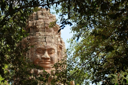 Prasat Ta Prohm is famous place in Siem reap, Cambodia