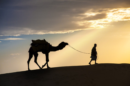 A desert local walks lead nose camel through Thar Desert dramatic sunlight photo