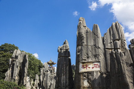 limestone Stone forest, Kunming Yunnan China. Stock Photo