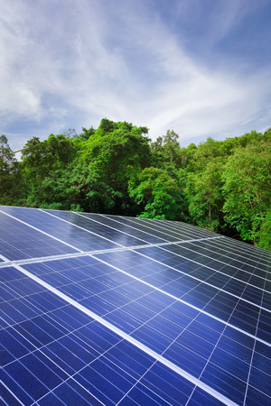 Solar cell panels with trees and blue sky nature outdoor photo