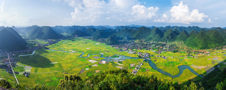 grass plot: rice field in valley around with mountain in Bac Son, Vietnam.
