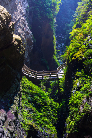 forest park: Longshuixia Fissure Gorge is natural place in Wulong county, southwest of China Chongqing city.