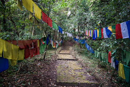 Tibetan prayer flag or Lung ta, the flag hang on high place for wind flow wish of people all around , Sikkim, India