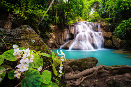 Waterfall in Thailand, called Huay or Huai mae khamin in  Kanchanaburi Provience, around with flower foreground ,forest environment and emerald  water.
