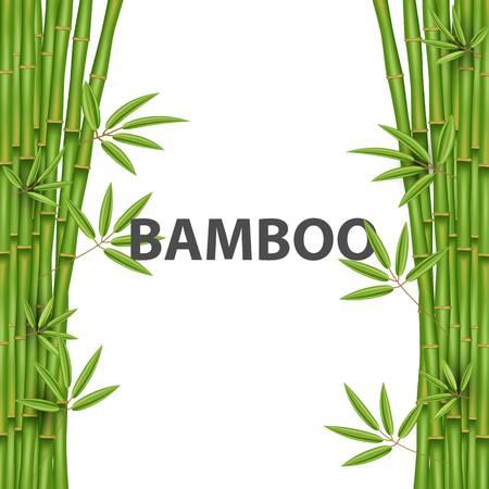 Creative bamboo boarder design.