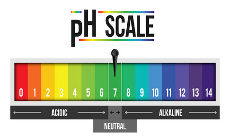 Creative vector illustration of pH scale value isolated on background. Chemical art design infographic. Abstract concept graphic litmus paper element.