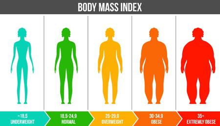 Illustration vectorielle créative de l'IMC, graphique infographique de l'indice de masse corporelle avec des silhouettes et une échelle isolée sur fond transparent. Modèle de vie de santé de conception d'art. Élément graphique de concept abstrait. Vecteurs