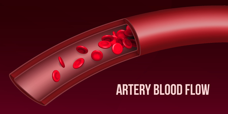 Creative vector illustration of artery red blood cells stream flow, microbiological medical erythrocyte vessel isolated on background. Art design medicine. Abstract concept graphic science element. Standard-Bild - 117646970
