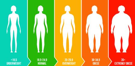 Illustrazione vettoriale creativo di bmi, grafico infografico indice di massa corporea con sagome e scala isolato su sfondo trasparente. Modello di vita di salute di design artistico. Elemento grafico concetto astratto.