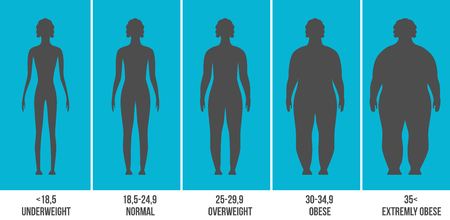 Creative vector illustration of bmi, body mass index infographic chart with silhouettes and scale isolated on transparent background. Art design health life template. Abstract concept graphic element.