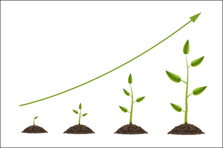Creative illustration of growth up green tree with leaf isolated on background. Business cycle diagram development. Art design seedling gardening plant life. Abstract concept graphic element. Banco de Imagens