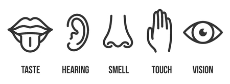 Creative illustration line icon set of five human senses. Vision, hearing, smell, touch, taste isolated on background. Art design nose, eye, hand, ear, mouth with tongue element. Reklamní fotografie