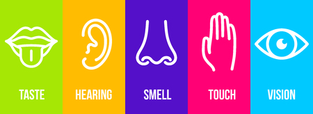 Creative illustration line icon set of five human senses. Vision, hearing, smell, touch, taste isolated on background. Art design nose, eye, hand, ear, mouth with tongue element. Stock Photo