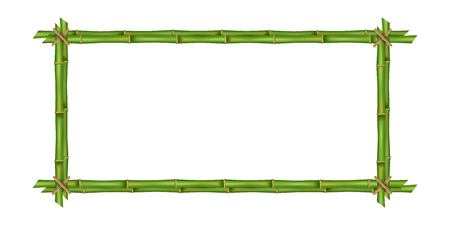 Creative illustration of bamboo stems frame isolated on background. Art design blank mockup template. Rope, paper, silk canvas. Abstract concept tropical signboard. Empty place for your text.