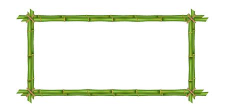 Kreatywna ilustracja ramki łodyg bambusa na białym tle. Sztuka projektowania puste makieta szablon. Sznur, papier, płótno jedwabne. Streszczenie pojęcie tropikalny szyld. Puste miejsce na Twój tekst.