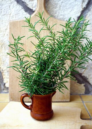 Fresh rosemary branches in a ceramic jar in front of a wooden kitchen cutting board