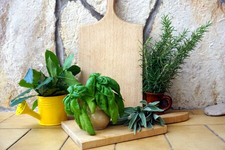 Aromatic herbs and spice plants, basil, laurel, sage and rosemary in decorative pots on a stone background and with a wooden kitchen board in the middle