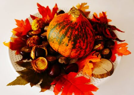 Colorful and rustic decorative background with red pumpkin, peppers, chestnut and fall leaves on the plate Stockfoto