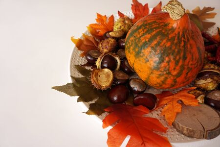 Vintage background with red hokkaido pumpkin, chestnuts with shells and vivid color autumn leaves on plate, flat lay with copy space