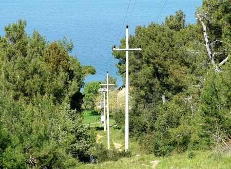 Electric poles in the forest on the paved way to the sea from forest area