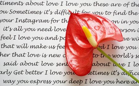 Words of love and feelings on the paper with red Anthurium flower laid on it