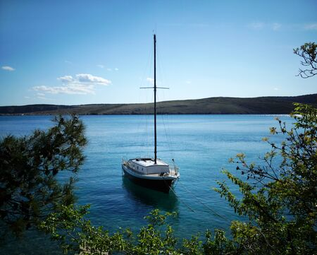 Small yacht floats on the beautiful blue sea framed by the branches of evergreen trees