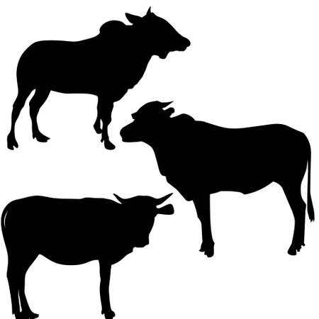 Illustration vector graphic, set of cow's silhouette. Good for your icon, etc