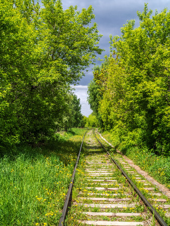 View along the railway. A hiking trail is nearby.. The road for the train on the sides of the green vegetation and forest