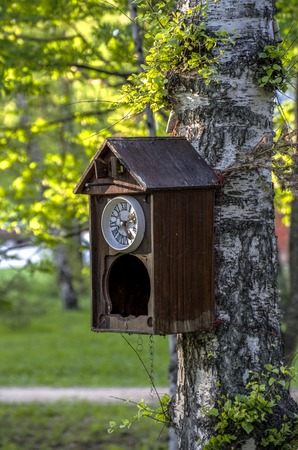 Ancient cuckoo clocks are tied to a tree in the form of a birdhouse. Stock Photo