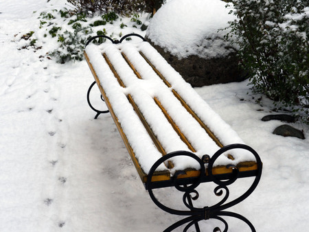 Bench in the park alley covered with snow in early winter. Bird 's tracks. Vintage style.