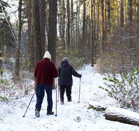 Senior couple with trekking poles hiking in cold forest. Active people outdoors. Adventure.