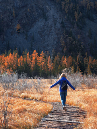 In the autumn frosty season, a young athletic girl walks on a wooden path over the water in a beautiful field with yellow grass. A path to the mountain.