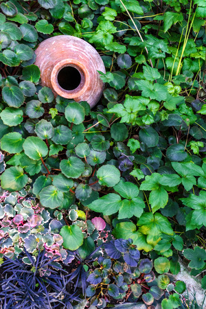 Ancient pitcher on the ground, in leaves of plants. Element of landscape design.