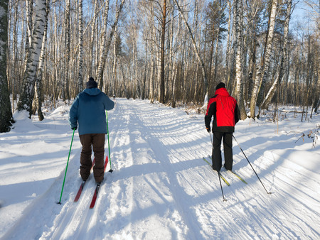 Cross-country skiing in the forest on a sunny day. Birch forest. Healthy lifestyle. View from the back.