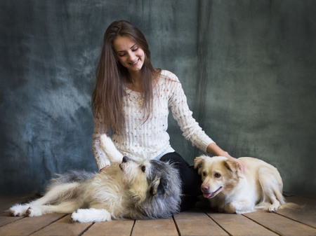 A girl is photographed with dogs from the shelter. Dogs are cautious and afraid, but they are treated well. Banco de Imagens