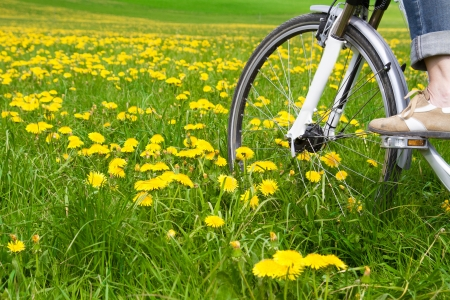 Spring meadow with blooming dandelion and bicycle